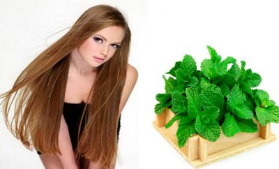 Tratamiento de menta para hacer crecer el cabello