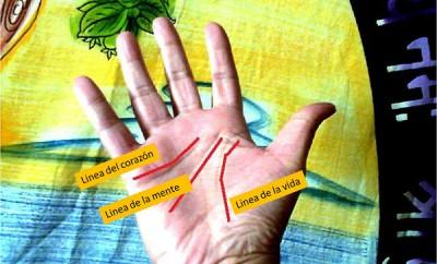 Significado de las líneas del amor y de la vida de tus manos