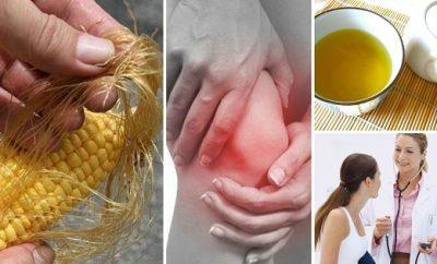 Beneficios del pelo de choclo