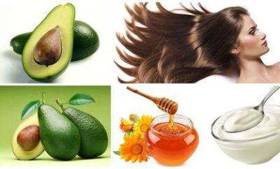 limentos-que-ayudan-a-la-regeneracion-del-cabello
