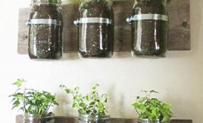 Macetas caseras con frascos de vidrio