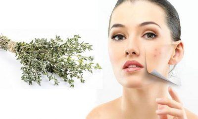 mascarilla de tomillo para el acne