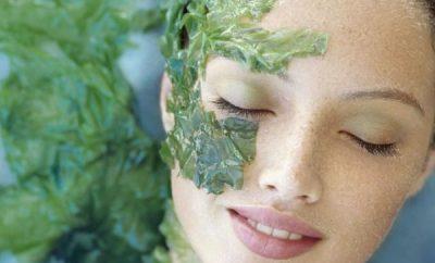 como hacer una mascarilla de cilantro para la cara