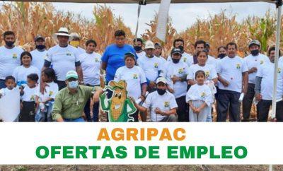 Oferta de trabajo en Agripac Ecuador